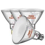 Explux 250W Equivalent LED PAR38 Flood Light Bulbs, Full-Glass Weatherproof, 2600 Lumens, Dimmable, 3000K Bright White, 2-Pack